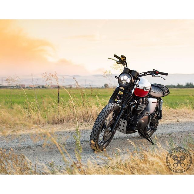 Hills Ablaze :: Triumph Scrambler with the full LED treatment. Our 7 Inch Headlight Conversion with LED Evo 2 Headlight, @motoboxusa Slimline LED Fender Eliminator, and Oberon indicators. Get all the details and pricing at motodemic.com (link in bio).